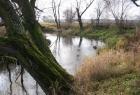 rzeka1